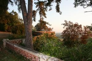 Vue sur la terrasse panoramique